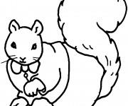 Coloriage et dessins gratuit Ecureuil 54 à imprimer