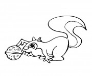 Coloriage et dessins gratuit Ecureuil 55 à imprimer