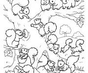 Coloriage et dessins gratuit Ecureuil 56 à imprimer
