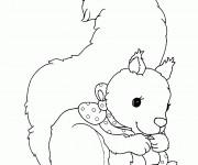 Coloriage et dessins gratuit Ecureuil 64 à imprimer