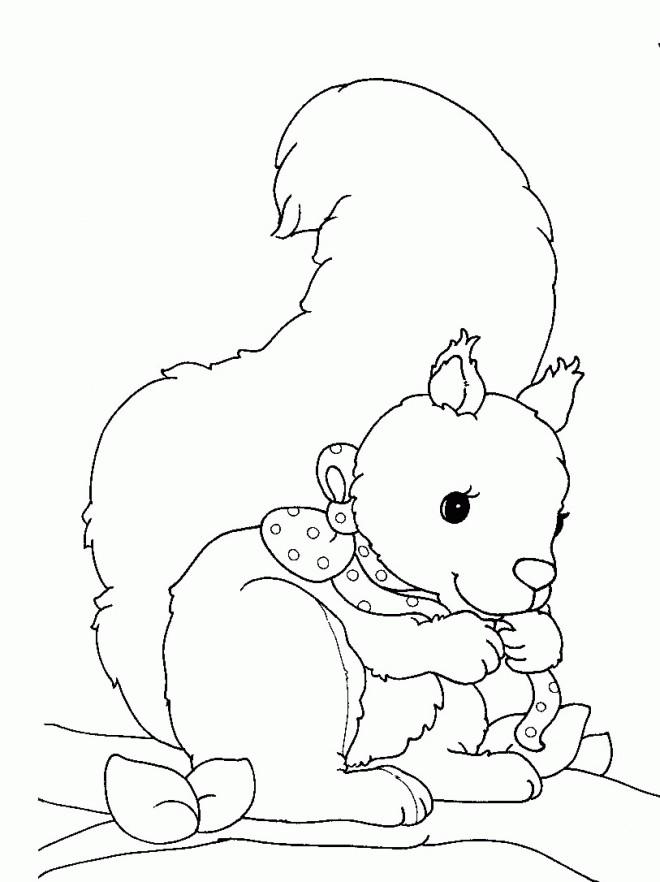 Coloriage et dessins gratuits Ecureuil 64 à imprimer