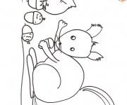 Coloriage et dessins gratuit Ecureuil 68 à imprimer