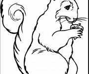 Coloriage et dessins gratuit Ecureuil 69 à imprimer