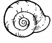 Coloriage dessin  Escargot 15