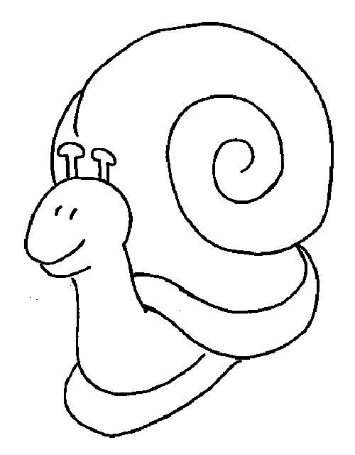 Coloriage Escargot Avec Sa Grande Maison Dessin Gratuit A Imprimer