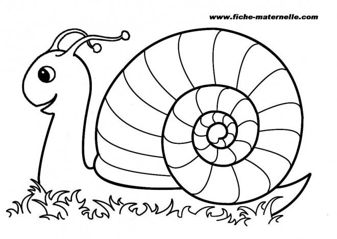 Coloriage et dessins gratuits Escargot couleur à imprimer
