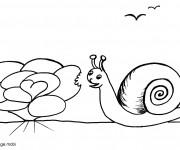 Coloriage Escargot en train de manger