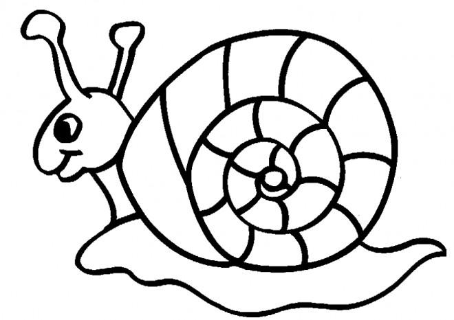 Coloriage et dessins gratuits Escargot facile à imprimer
