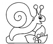 Coloriage Escargot facile pour enfant