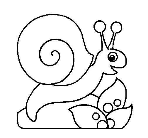 Coloriage Facile Pour Bebe En Ligne.Coloriage Escargot Facile Pour Enfant Dessin Gratuit A Imprimer