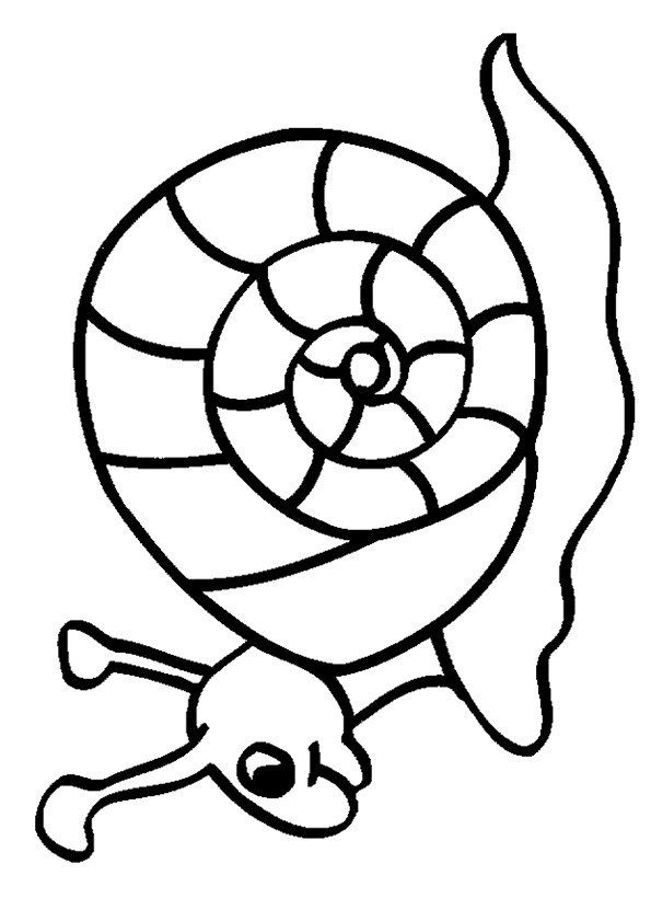 Coloriage et dessins gratuits Escargot pour enfant à imprimer