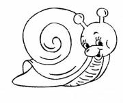 Coloriage Escargot sympathique