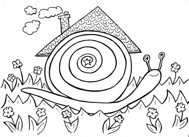 Coloriage la maison de l 39 escargot dessin gratuit imprimer - La maison des escargots ...
