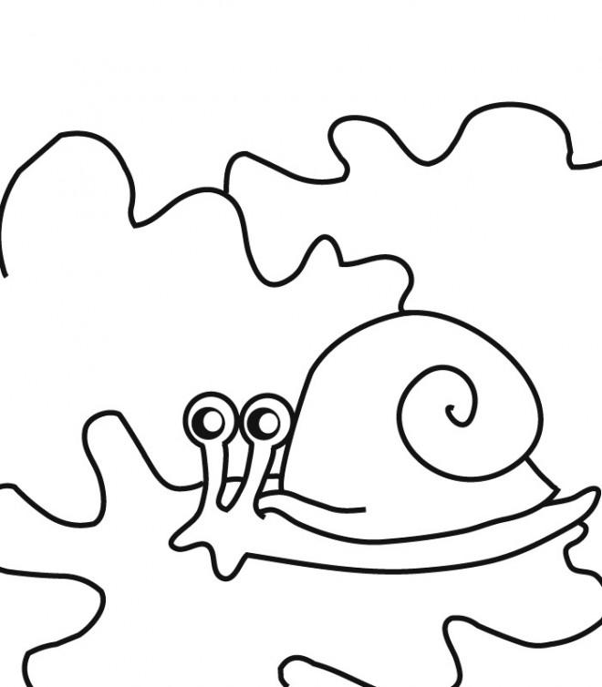 Coloriage et dessins gratuits Le petit Escargot dans la nature à imprimer