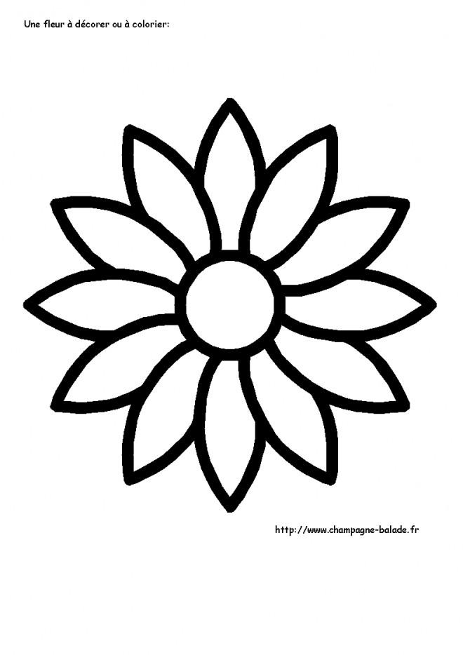 Coloriage fleur 24 dessin gratuit imprimer - Fleur simple dessin ...