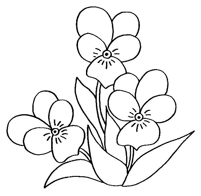 Coloriage Fleur Au Crayon Noir Dessin Gratuit à Imprimer