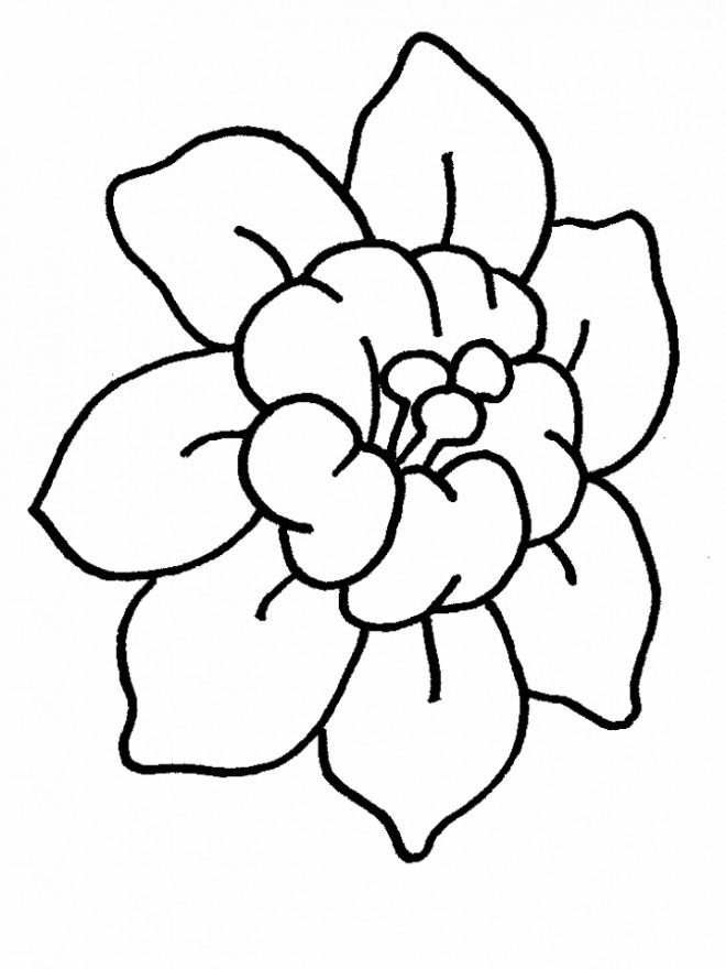 Coloriage Fleur De Lotus Stylisée Dessin Gratuit à Imprimer