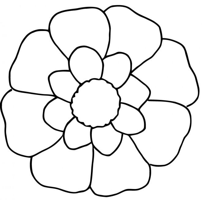Coloriage et dessins gratuits Fleur en blanc et jaune à imprimer