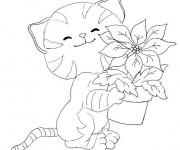 Coloriage Fleur et Chat