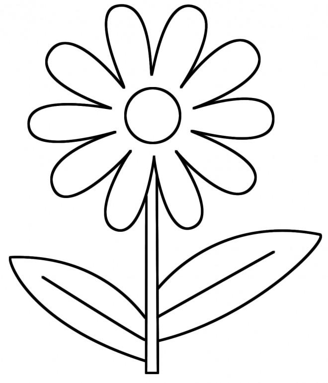 Coloriage Fleur Facile En Couleur Dessin Gratuit à Imprimer