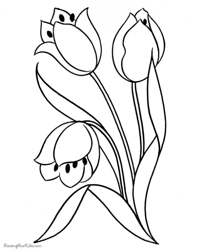 Coloriage Fleur Maternelle Dessin Gratuit A Imprimer
