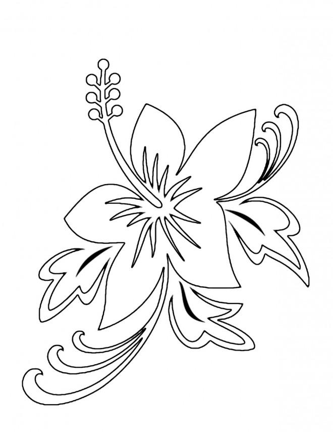 Coloriage et dessins gratuits Fleur pour décoration à imprimer