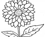 Coloriage Fleur pour enfant
