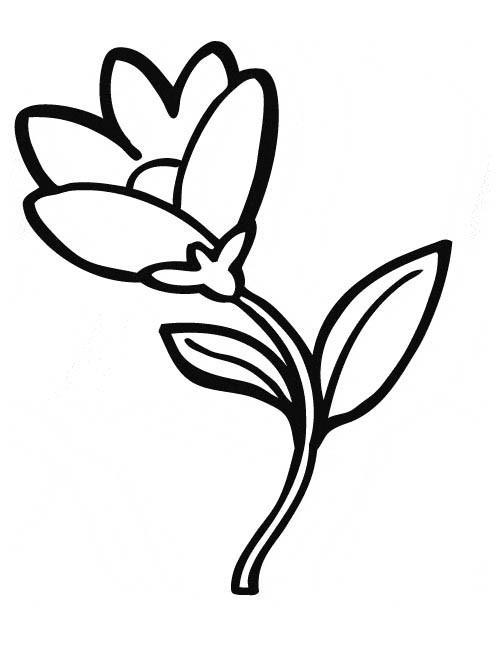 Coloriage et dessins gratuits Fleur presque ouverte à imprimer