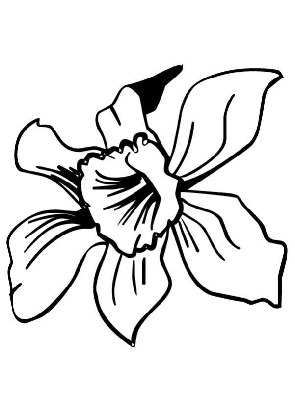 Coloriage et dessins gratuits Fleur Princesse à imprimer