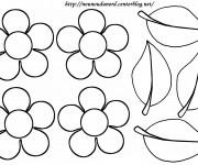 Coloriage et dessins gratuit Fleurs et pétales à imprimer