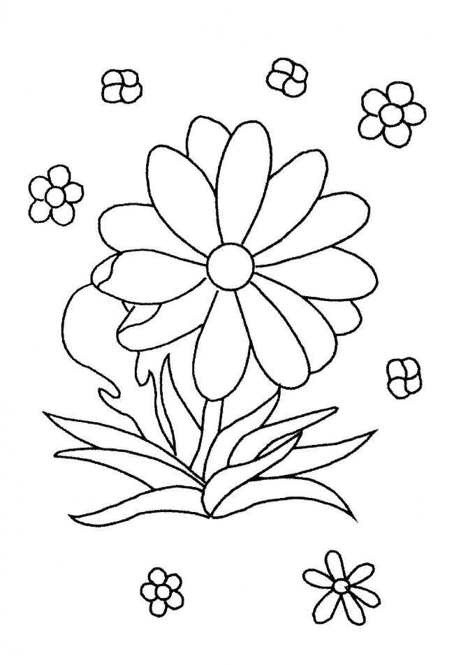 Coloriage fleurs partout dessin gratuit imprimer - Fleur coloriage a imprimer ...