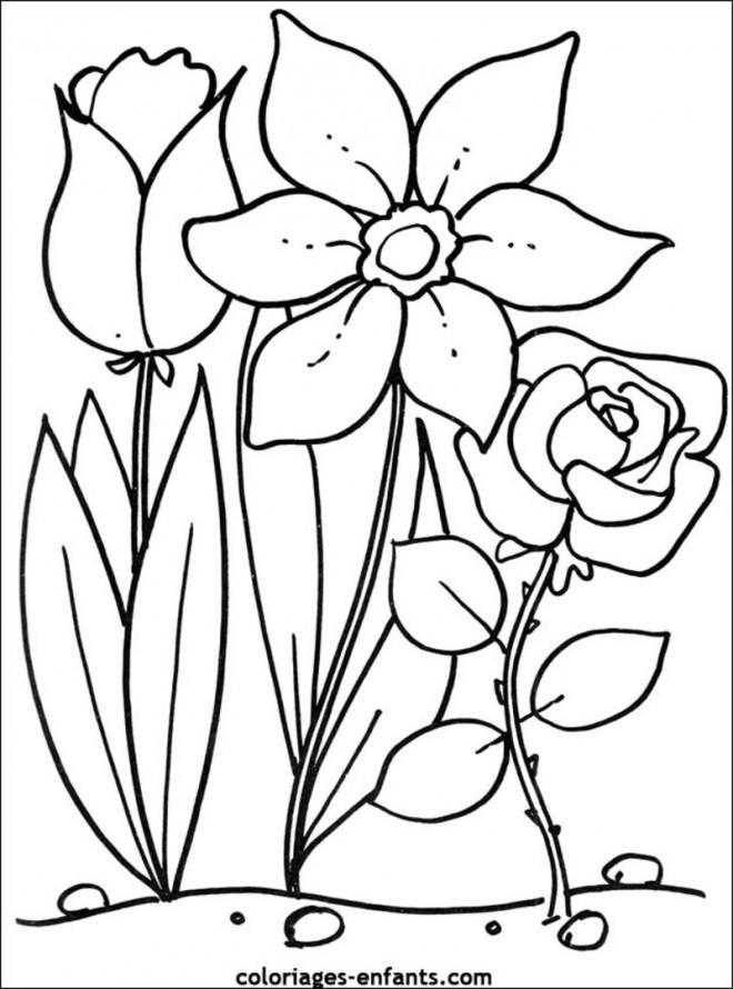 Coloriage et dessins gratuits Fleurs Printemps à imprimer