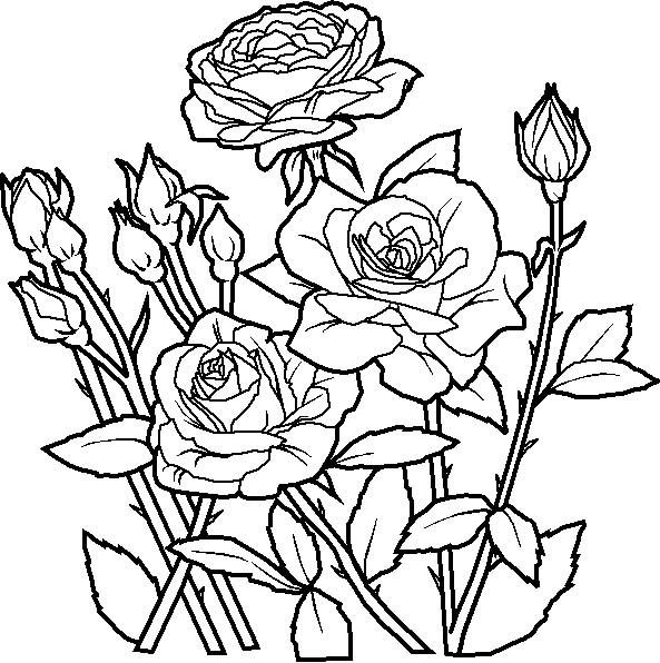 Coloriage et dessins gratuits Jardin de fleurs à imprimer