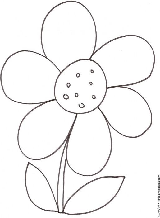 Coloriage Marguerite facilement dessinée dessin gratuit à ...