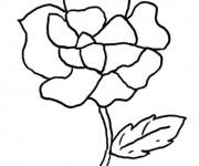 Coloriage Thème Fleur