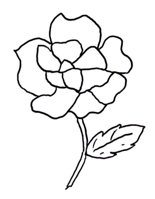 Coloriage et dessins gratuits Thème Fleur à imprimer