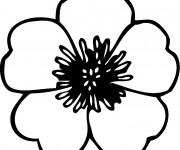 Coloriage et dessins gratuit Une Fleur ordinaire à imprimer