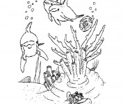 Coloriage et dessins gratuit Corail Fond marin à imprimer