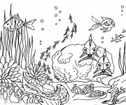 Coloriage dessin  Fond Marin 2