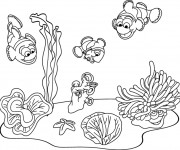 Coloriage Fond Marin poissons
