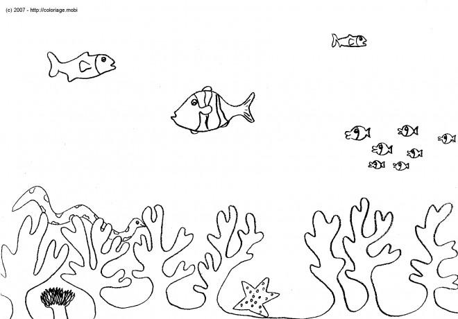 Coloriage et dessins gratuits Fond sous marin à imprimer