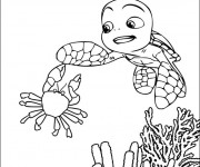 Coloriage Tortue Fond Marin