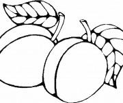 Coloriage dessin  Fruit 18