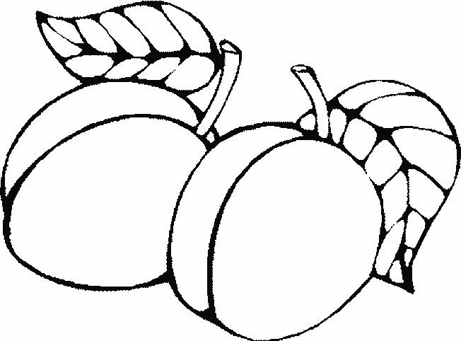 Coloriage et dessins gratuits Fruit Abricot à imprimer