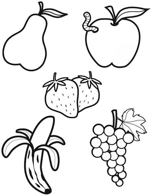 Coloriage et dessins gratuits Fruits vecteur à imprimer