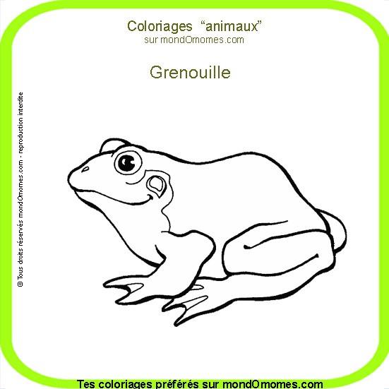Coloriage et dessins gratuits Animal Grenouille à imprimer