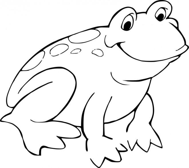 Coloriage grenouille en couleur dessin gratuit imprimer - Grenouille a colorier ...