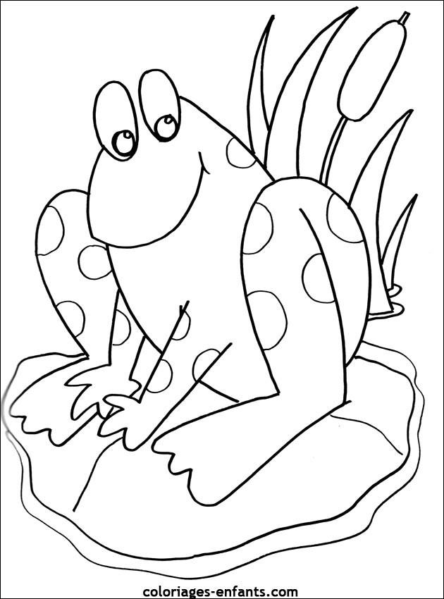 Coloriage et dessins gratuits Grenouille Nénuphar à imprimer
