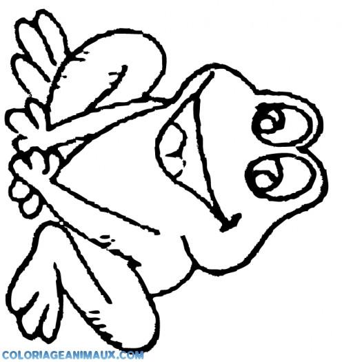 Coloriage et dessins gratuits Grenouille qui rit à imprimer