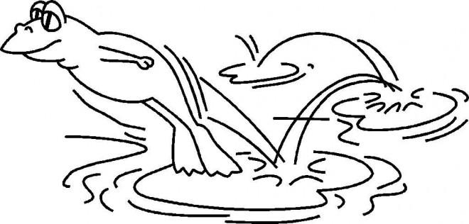 coloriage grenouille saute sur n nuphar dessin gratuit. Black Bedroom Furniture Sets. Home Design Ideas